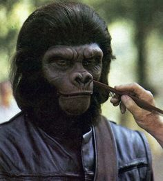 Sullen on the Planet of the Apes