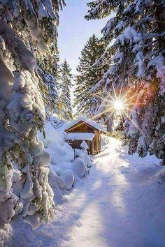 Jó reggelt, szép napot kívánok!