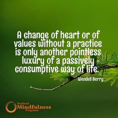 A change of heart or values without a practice is only another pointless luxury of a passively consumptive way of life. - Wendell  Berry