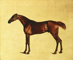 """George Stubbs, """"Pangloss"""" (1792), oil painting (via Indianapolis Museum of Art/Wikimedia)"""