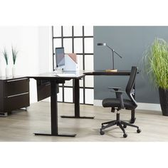 Afton L-Shape Corner Standing Desk Standing Desk Height, Electric Standing Desk, Dark Wood Desk, L Shaped Office Desk, Sit To Stand, Glass Desk, Adjustable Height Desk, White Desks, Desk With Drawers
