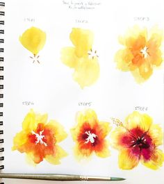 artbybianca🌺 TUTORIAL! 🌺 Today I decided to share a step by step tutorial of a yellow and red hibiscus with you guys! 😀 If you try this technique tag #biancasartchallenge so I can see #watercolorarts