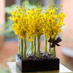 Vaso Acrílico com Chuva de Ouro | Uma ótima opção para agradecer um jantar e para decoração de ambientes coorporativos.