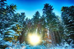 Austria, Bohemian, Mountains, Nature, Travel, Naturaleza, Viajes, Destinations, Traveling