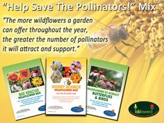 This Pollinator MixesCollectionconsists of our 3 great 1oz. pollinator mixes to help grow season-long forage for native pollinators, birds and honeybees. Complete the set with a 1 oz package of our Wildflower Mix for Hummingbirds if you have them in your area. Contains:1 oz Honey Source Wildflower Mix, 1 oz Bee Rescue Wildflower Mix, 1 oz Wildflowers for Butterflies and Birds– All pure seed, no fillers– Non GMO - Zones: 2-8