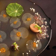Libro El Bulli 2005-2011  Por Ferran Adrià|Librería Gastronómica