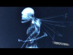 Restos mortais de uma fada real são encontrados, dizem pesquisadores - OVNI Hoje! : OVNI Hoje!