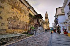 La fachada norte es la principal de las cuatro y mira hacia la calle Cardenal Herrero, a la que se abren las puertas del Caño Gordo y del Perdón, ésta última situada junto al Alminar o Torre-Campanario de la Catedral. Córdoba (Spain).