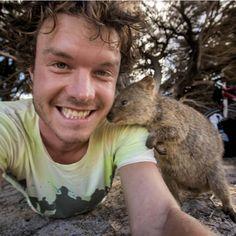 A galeria de selfies com animais mais incrível que você já viu