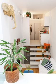 This Tiny Madrid Apartment Has Layers, Like a Cake