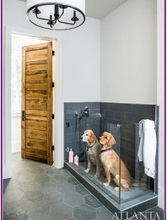 The Sheehans' two golden retrievers, Burton and Roscoe, enjoy the outdoors as much as their children, swimming in the pool on a daily basis. To accommodate the two occasionally soaking-wet dogs, Sheehan incorporated a dog wash in the mudroom right off the Dog Washing Station, Pet Station, Sweet Home, Dog Rooms, Rooms For Dogs, Dog Shower, Dog Houses, House Goals, Interior Design Living Room
