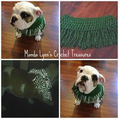 MandaLynn's Crochet Treasures : Fringe Reflect Cowl 4 Pup + size