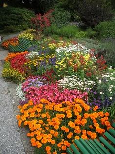 Amazing public garden in Switzerland