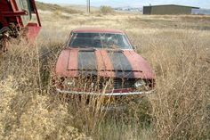 1969 Camaro Z/28 Left In A Field - http://barnfinds.com/1969-camaro-z28-left-in-a-field/