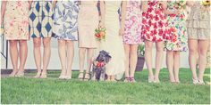 i let each of my bridesmaids pick their own dress to wear with a few guidelines- and they did a fabulous job! mismatched bridesmaids dresses CAN work and look amazing! (also, a flower dog)