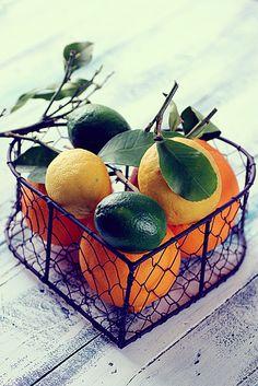 citrus...
