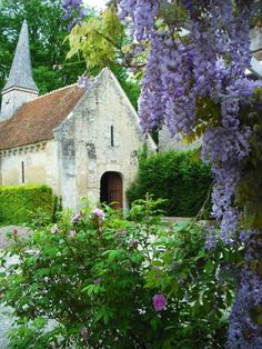 Wisteria and white chapel--Beautiful church. Abandoned Churches, Old Churches, Abandoned Cities, Abandoned Mansions, Magic Places, Old Country Churches, Cathedral Church, Church Building, Chapelle