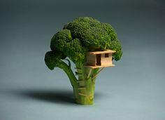 Arbre à cabane en brocoli créée par Brock Davis