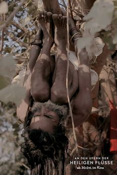 Hatha Yogi Baba (Asket und Sadhu) bei Yoga-Übung an einem Baum während des Kumbh Mela (größtes spirituelles Fest der Welt) in Allahabad 2013.  Hatha Yogi Baba (ascetic and Sadhu) doing  yoga exercise on a tree during the Kumbh Mela (the biggest spiritual festival in the world) in Allahabad 2013.