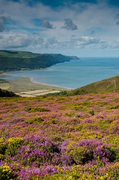 Porlock Bay and the Exmoor coast, Somerset, England