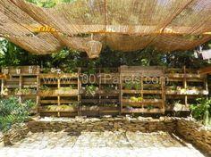 My pallet Garden | 1001 Pallets