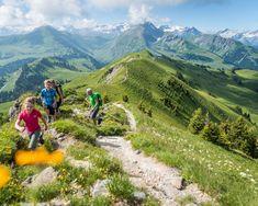 Horneggli Panoramaweg - Wanderland Wanderland, Hiking, Mountains, Nature, Travel, Alps, Walks, Viajes, Traveling