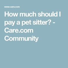 How much should I pay a pet sitter? - Care.com Community