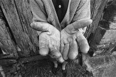 Paul Prestreau - Photographe