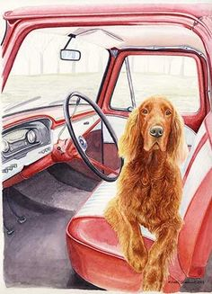 """""""Not Without Me"""" A Limited Edition Irish Setter Print"""