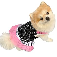 SmallSize Dog Dress HP95TM Summer Puppy Dog Princess Dress Clothes Cute Teddy Dog Cat Tutu Dress Small Dog Dot Skirt Pet Dog Dress A S Length1102 ** Check this awesome product by going to the link at the image.Note:It is affiliate link to Amazon.