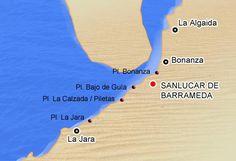 16 Ideas De Romería Del Rocio Romeria Camino Del Rocio Andalucía