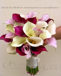 Calla Lillies Bouquet, Cale, Bride Bouquets, Betty Boop, Pink Roses, Wedding Flowers, Weddings, Google, Bridal Bouquets