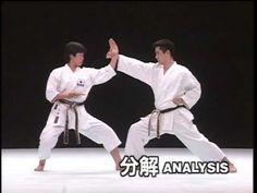 kanku dai _ karate kata & bunkai