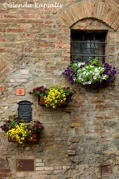 Tuscany, love the flower boxes against the the ancient walls.