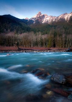 """The WhiteChuck"" By Trevor Anderson"