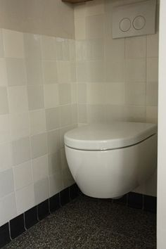 toilet met granieten vloer en witjes