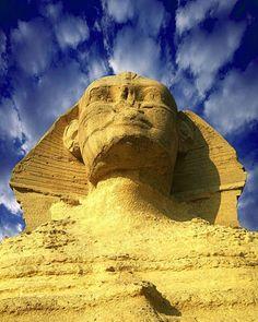 The sphinx  Giza  Egypt.