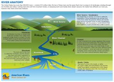 Learn, discover, understand your rivers! The more you know about the habitat, the more you can understand it's inhabitants aka trout! via: American Rivers Stem Science, Earth Science, The More You Know, Good To Know, Montessori Science, 6th Grade Social Studies, Fly Fishing Tips, Missouri River, Science Lessons