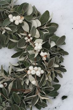 Snip foliage & white berries for a wreath. (This seems to be made of sage and tallow berries.)