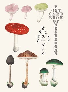 Twenty-four postcards featuring images of mushroom and fungi paintings by European and Japanese naturalists from the and centuries. Pictures selected from the book Mushroom Botanical Art. Mushroom Crafts, Mushroom Art, Nature Illustration, Botanical Illustration, Book Cover Design, Book Design, Graphic Design Books, Postcard Book, Psy Art