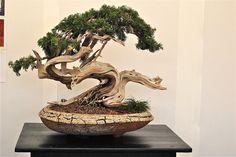 http://art-monie.blogspot.fr/2011/07/seung-ho-yang-ceramiste-coreen.html