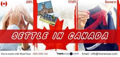If you want to apply any type of visas to migrate #Canada, then approach #MoreVisas Immigration Consultancy...