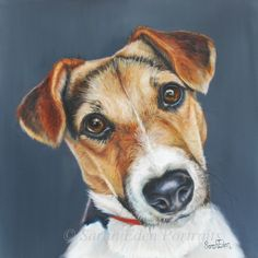 "'Teal' Jack Russell painting by Sarah Eden oil on board, 12 x 12"" #jr…"