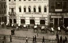1924 <br /> İzmir'de deve kervanı<br /><br /> Sırtlarında yüklerle Anadolu'dan yola çıkıp İzmir'in limanlarına yüklerini boşaltmak için ilerleyen develer.