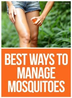 9 Ways To Manage Mosquitoes This Summer