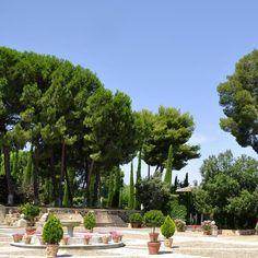 ¿Sabías que los jardines del Ángel cuentan con más de 250 especies de plantas, flores y árboles? Descubre un cigarral de leyenda en www.cigarraldelangelcustodio.com