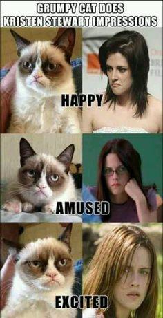 LOLOLOL Grumpy cat & Kristen Stewart