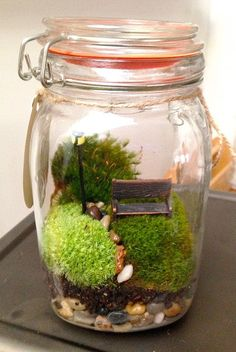 Miniature garden scene inside this LARGE glass live moss terrarium. Description from pinterest.com. I searched for this on bing.com/images