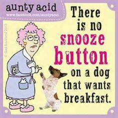 Auntie Acid Funnies - Bing Images