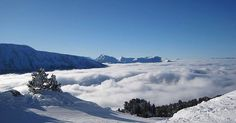 Have you ever walked on clouds? #itscloudy #formomentsoflevity #snowfun #walkingonclouds #cloudy #whataview #nature #love #snowboard #ski #lovelife #throwback #donteatyellowsnow #schnee #letitsnow #france #chamrousse #picoftheday #igers #potd #sunshine #overtheclouds #überdenwolken #travel #traveling #instagood #followus